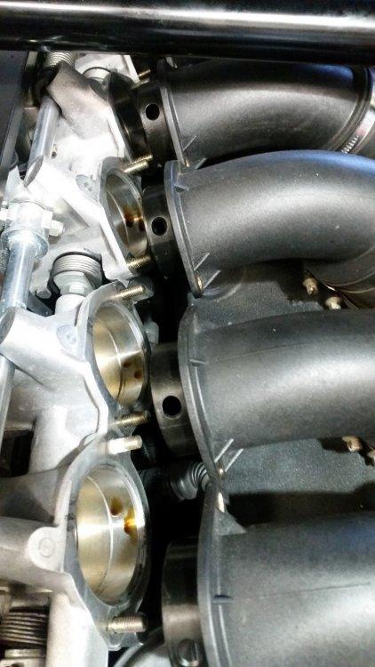Throttle body oil.jpg